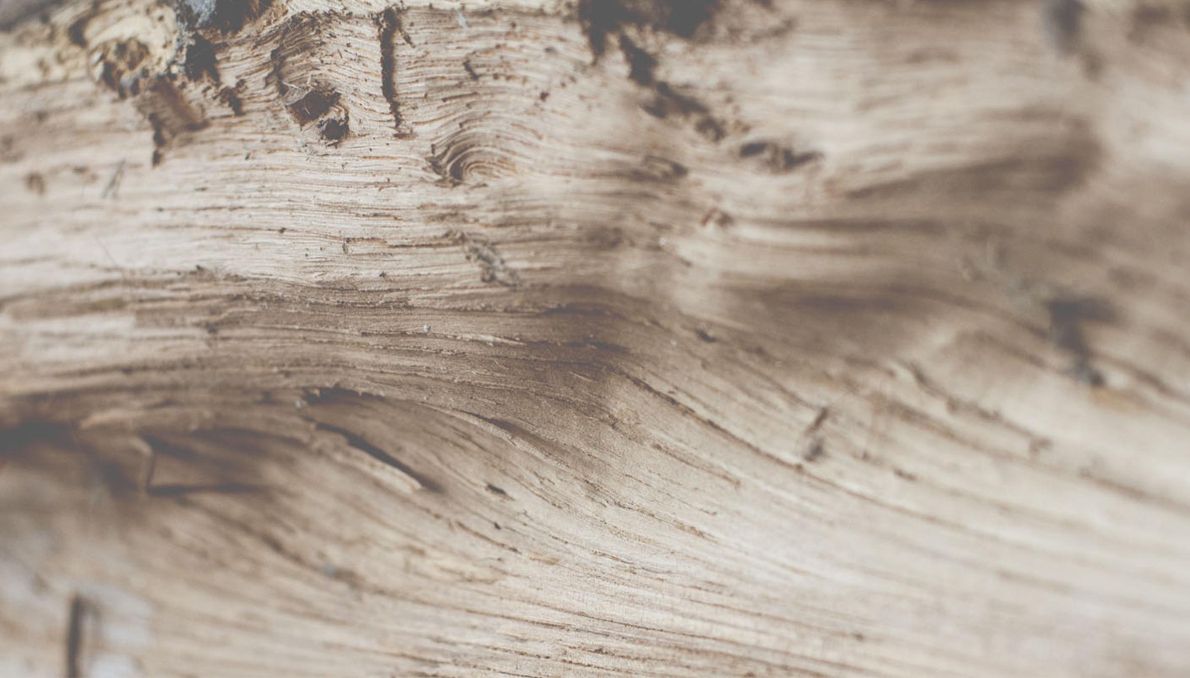 Z&V – foto hout – ovenmobiel